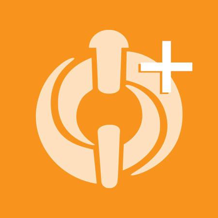 Linchpin Symbol Plus